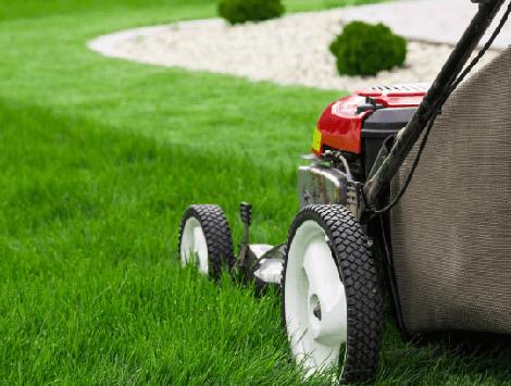 Landscape & Lawn Maintenance Cost