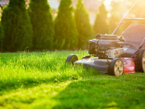 Landscape & Lawn Maintenance in Denver CO